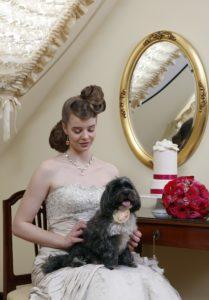 Bibi, az Eklektika esküvői ruhaszalon Budapest kiskutyája fotózás közben